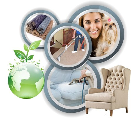 carpet, upholstery and rug cleaning